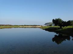 Tee Tree (Bricheno) Tags: summer tree reflections river island scotland clyde escocia golfcourse brodick arran isleofarran szkocja schottland scozia cosse  esccia  glenrosawater  bricheno scoia