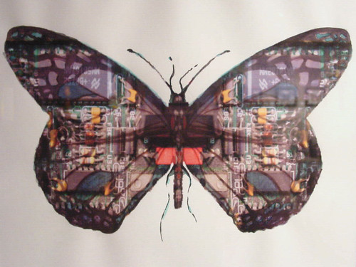 Circuit Board Butterfly #16