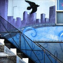 ~ Flights of Fancy ~ (Dom de Paris) Tags: california blue light usa ab
