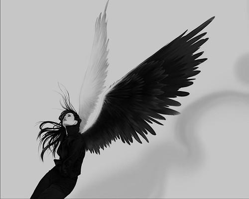 [フリー画像] グラフィックス, イラスト, 人物(イラスト), 天使, 201107010100