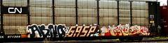 Abno - Gasp - Grey (mightyquinninwky) Tags: railroad cn train logo grey graffiti tag graf tracks railway tags tagged railcar rails graff graphiti freight gasp canadiannational carcarrier trainart autorack holyroller rollingstock abno fr8 railart spraypaintart freightcar movingart freightart ttgx autoraxx paintedrailcar paintedautorack taggedrailcar autorax taggedautorack