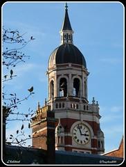 Croydon Clocktower, Katharine Street. (L'habitant) Tags: london clock surrey clocktower croydon oldtownhall cr0 katharinestreet p1000320 091027