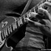 Dweezil Zappa Photo 12
