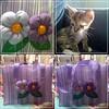 Sacola Ecológica Belinha (Fuxico de Chita) Tags: de flor artesanal feira fuxico feltro nylon tecido aplicação sacola ecológica