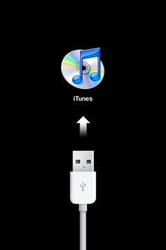 iTunes接続画面