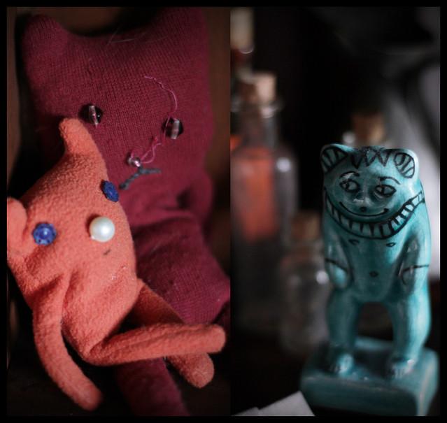 noriko.stardust's cabinet of curiosity