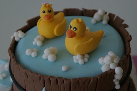 Patos para Rosana 5