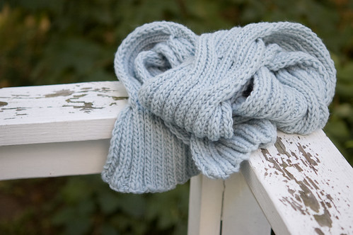 Back Cove Scarf