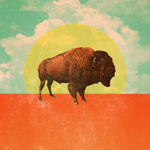 Buffalo buffalo buffalo buffalo buffalo.