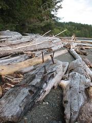 Ajopuita ja mielenkiintoisia nauloja (Riikka's photos) Tags: wood canada coast bc outdoor vancouverisland driftwood wilderness lanscape kanada sointula malcolmisland malkosaari