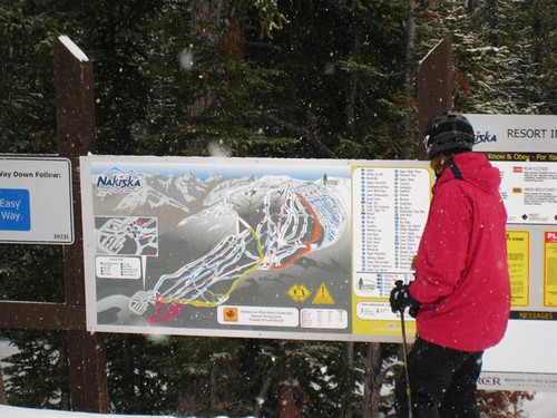 Skier reading trail map, Nakiska