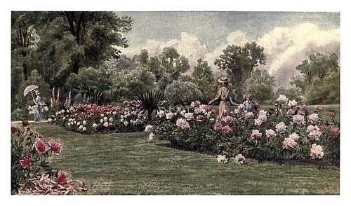 020--Kew gardens 1908- Martin T. MowerLas peonias
