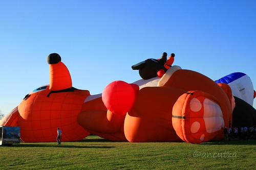 Il più grande festival italiano delle mongolfiere a Ferrara
