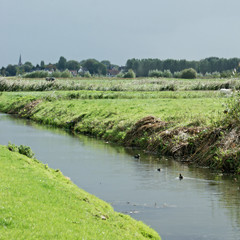 [rainday/sunday] (Overdaforest) Tags: sun holland rain landscape barendrecht