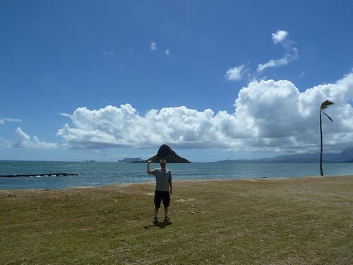 "Fuzzy ""wearing"" Chinaman's Hat (Mokolii Island)"