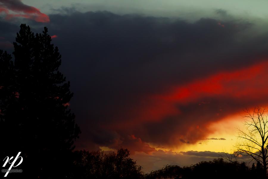 ~ 271/365 Sunset ~