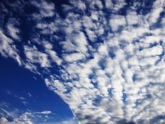 cloudy (Gerardography) Tags: blue sky cloud color azul contrast mexico stadium guadalajara estadio cielo verano contraste nube omnilife