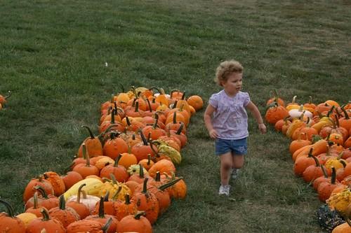 PumpkinRunner