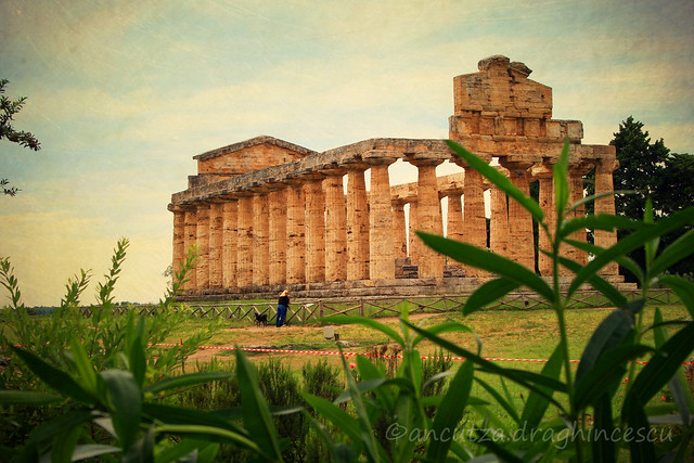 foto dei templi di Paestum in Campania italia