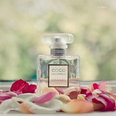 mademoiselle ({cindy}) Tags: pink red orange white green window glass rose yellow petals bottle perfume bokeh explore coco chanel mademoiselle