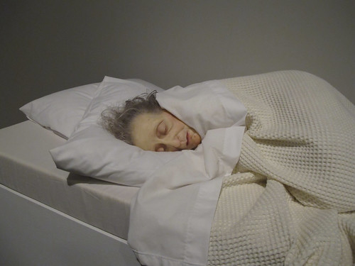 Ron Mueck Exhibition by Christchurch City Libraries