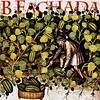 BFACHADA_CAPA_M