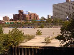 Amuse Mole Edrok Stal (KnowYourMailman) Tags: chicago green graffiti mole amuse stal cabrini edrok