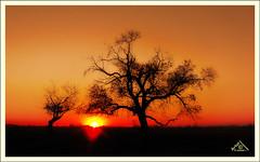 October Sunset (Artvet) Tags: canon powershot s95