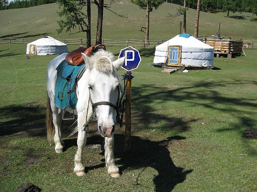 Mongolia-parking