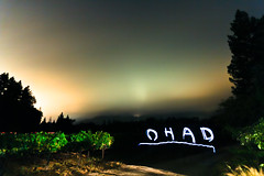 I Wrote My Name With an iPhone - Take 2 (ohad*) Tags: california longexposure light lightpainting night rural canon vineyard napa sthelena ohad lightwriting 50d kletter canon50d ohadbenyoseph