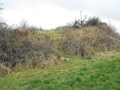 Ballyhogan, Rath and Stone, Co. Tipperary. (The Standing Stone) Tags: ireland tipperary rath standingstone ringfort ballyhogan
