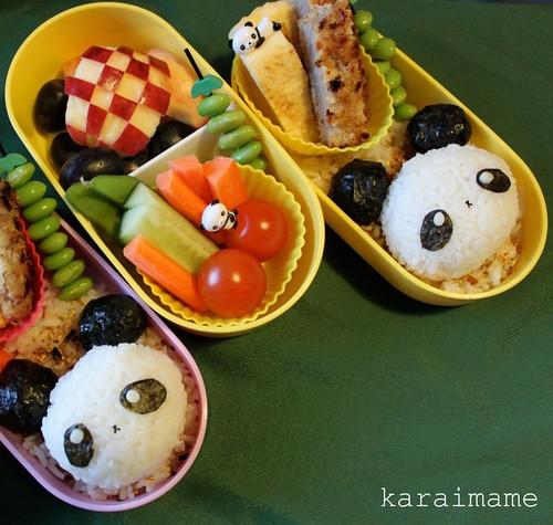 Panda tonkatsu bento