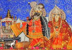 Darshan 9th October, 2010 (Udasin Karshni Ashram / Naresh Swami) Tags: darshan radhakrishna gokul mathura mahavan swamikarshninaresh sriudasinkarshniashram takurdarshan ramanbihariji nareshswami