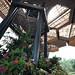 Orchidarium - Medellin Botanical Garden
