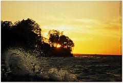 Golden Sunset (blmiers2) Tags: trees sunset pordosol usa sun lake newyork nature water landscape geotagged golden zonsondergang nikon surf tramonto waves sonnenuntergang greatlakes lakeontario goldensunset 日落 puestadelsol coucherdusoleil waterspray 일몰 日没 заходсолнца d40x blm18 blmiers2