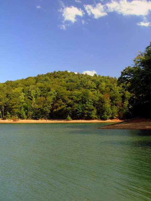 Watauga Lake Cove
