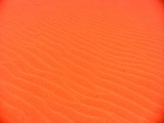JORDANIEN - Sand, Sand, Sand ... (roba66) Tags: travel nature rock stone landscape sand sandstone desert wadirum natur middleeast jordan explore arabia orient landschaft lawrenceofarabia sandstein wadi vacance jordanien wüste deserto jordanie voyages kingdomofjordan arabbia jordanienwadirum roba66 urlaub2010 jordanien2010 vordorient wadiroum