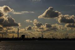 Rotterdam harbor skyline (Arjan Gerritsen) Tags: haven skyline photography harbor photo rotterdam foto fotografie harbour picture afbeelding canonefs1785isusm eos400d
