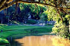 Parque São Lourenço by Andre Luiz Bellafronte, on Flickr