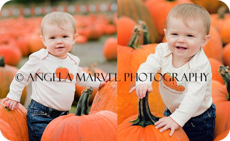Angela Marvel Photography | Pumpkin patch