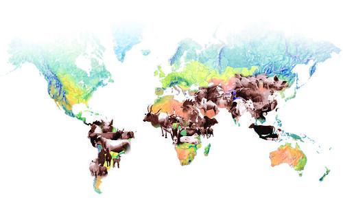 Livestock landscapes