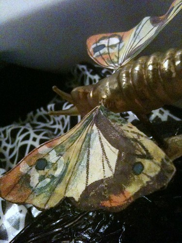 Butterfly Gala