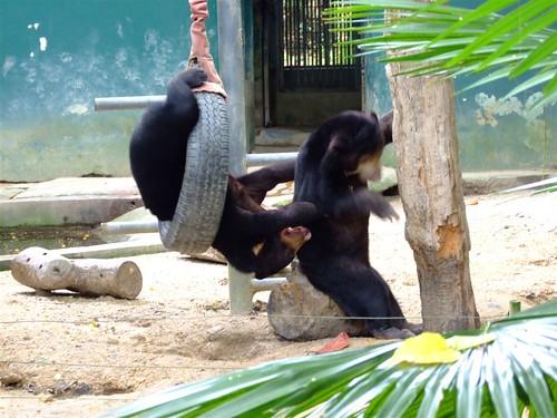 zoo 159