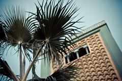 IMG_9391 (Soroll) Tags: mosque morocco fez mezquita marruecos fes mosquéeimammalik