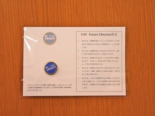 U40 - Future Librarian - PINS