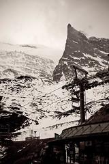 Kleine Kaserer from Sommerberg (Bavarian Ski Club) Tags: winter snow ski austria europa europe glacier snowboard gletscher tux zillertal hintertux oesterreich tuxertal bavarianskiclub