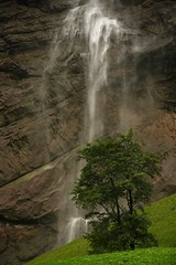 Lower section of the Staubbach Falls (crowlem) Tags: alps nature landscape switzerland waterfall falls lauterbrunnen cascade staubbach
