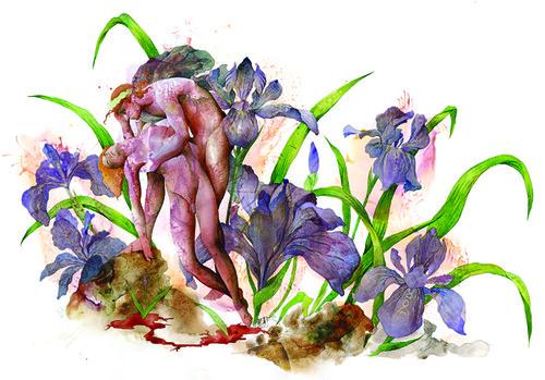 Hanna-G_MuellerBrown_Hyacinthus_small.jpg