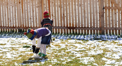 niamh & muriel snow melting backyard