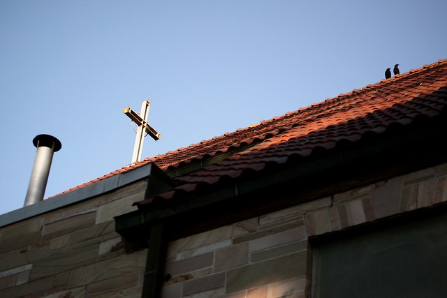 church rooftop and crows